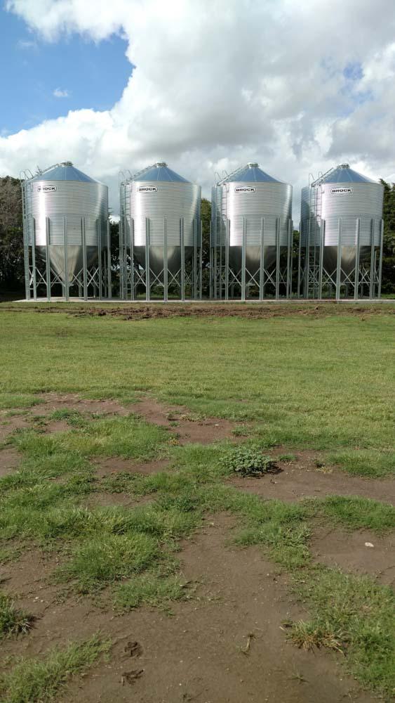 Four metal grainbins along a hedge row